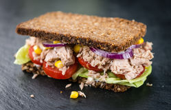 Ny gjord tonfisksmörgås med wholemealbröd & x28; selektiv focus& x29; arkivfoton
