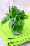 ny glass green för basilika Royaltyfria Foton