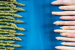 Ny gräsplan, vit sparrisforsmodell, på en bästa sikt för blå träbakgrund Royaltyfri Fotografi