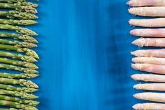 Ny gräsplan, vit sparrisforsmodell, på en bästa sikt för blå träbakgrund Fotografering för Bildbyråer