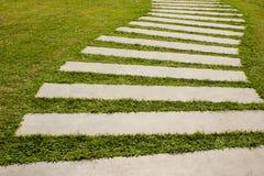 Ny gräsväg Arkivbild