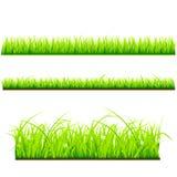 Ny gräsvektormall vektor illustrationer