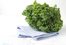 Ny grön grönkål Royaltyfri Foto