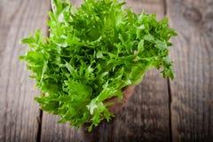 Ny grön grönsallat på en trätabell Royaltyfri Bild