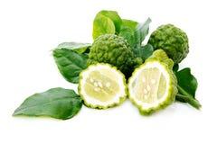 ny grön kafirlimefrukt Royaltyfria Bilder