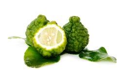 Ny grön limefrukt. Kafir Fotografering för Bildbyråer