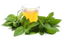 Ny grön mintkaramell och kopp av drycken Vit bakgrund Royaltyfri Bild
