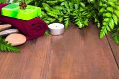 Ny grön ormbunke, stearinljus, stenar, grön tvål och handduk för brunnsort Arkivbild