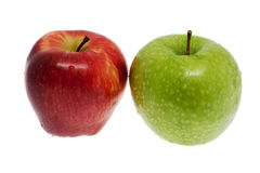 ny grön red för äpple Fotografering för Bildbyråer