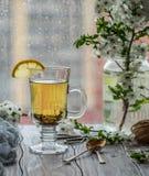 ny grön tea Tekopp med det gröna tebladet på trätabellen Tea med citronen Fotografering för Bildbyråer