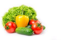 ny grönsak Royaltyfri Foto