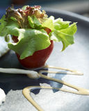 Ny grönsak Royaltyfri Fotografi