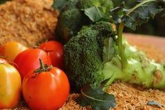 Ny grönsak Arkivbild