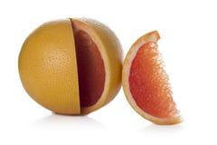 Ny grapefrukt Arkivbild