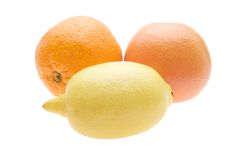 ny grapefruktcitronorange Royaltyfri Fotografi