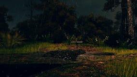 Ny grav i läskig nattskog i regn 4K stock illustrationer