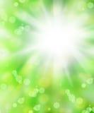ny green för abstrakt bakgrund Royaltyfri Fotografi