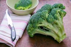 ny green för broccoli Arkivbilder