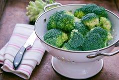ny green för broccoli Royaltyfria Bilder