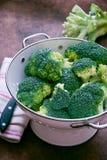 ny green för broccoli Fotografering för Bildbyråer