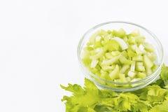 ny green för selleri Fotografering för Bildbyråer
