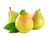 ny green låter vara pearen royaltyfri bild