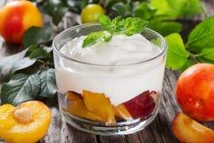 Ny grekisk yoghurt med gula och röda plommoner i kopp Royaltyfria Bilder