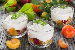 Ny grekisk yoghurt med gula och röda plommoner i koppar Arkivfoton