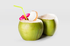 Ny grön ung kokosnötfrukt för kokosnötter Fotografering för Bildbyråer