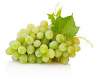 Ny grupp av gröna druvor med sidor som isoleras på vit bakgrund Arkivfoton
