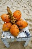 Ny grupp av kokosnötter Arkivfoto
