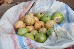 Ny guava på traditionellt marknadsställe arkivfoto