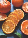 Ny gul citrusfrukt - satsuma på den gråa bakgrunden - kopieringsutrymme royaltyfri foto