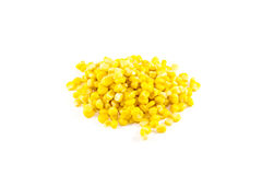 Ny gul majs Royaltyfri Fotografi