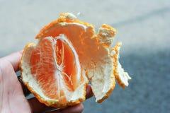 ny half orange Royaltyfri Fotografi