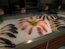 Ny havs- avdelning på supermarket Tesco Lotus, royaltyfria bilder
