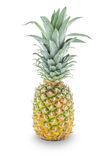 Ny hel ananas Royaltyfria Bilder