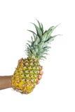 Ny hel ananas Fotografering för Bildbyråer