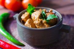 Ny hemlagad feg curry med kyligt i keramisk bunke för tappning royaltyfri fotografi