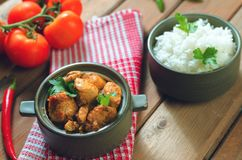 Ny hemlagad feg curry med kyligt i keramisk bunke för tappning royaltyfri bild