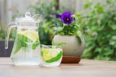 Ny hemlagad lemonad med is och mintkaramellen royaltyfri fotografi