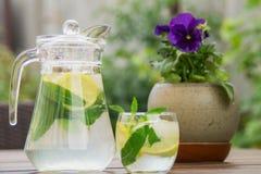 Ny hemlagad lemonad med is och mintkaramellen arkivbilder