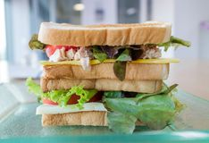 Ny hemlagad tonfisksmörgås på den glass plattan Fotografering för Bildbyråer