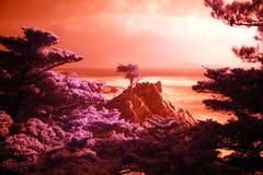 ny himmel Fotografering för Bildbyråer