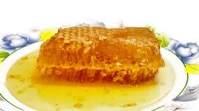 Ny honung med honungskakan. Arkivfoton