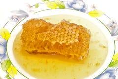 Ny honung med honungskakan. Fotografering för Bildbyråer