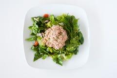 Ny huggen av tonfisksallad Arkivfoto