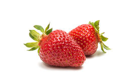 ny isolerad jordgubbe Royaltyfri Bild