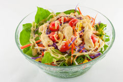 ny isolerad salladgrönsakwhite royaltyfri foto