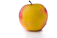ny isolerad white för äpple Arkivbilder